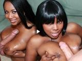 Fellation pour ces deux jolies blacks pulpeuses